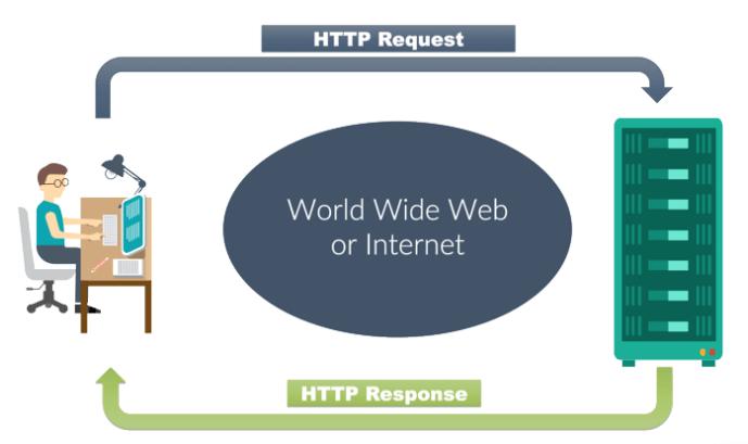 Que sont les codes de statut HTTP ?
